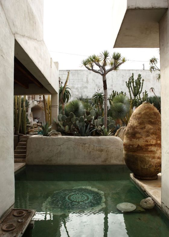 Dipping pool with cacti garden - Philip Dixon House, California