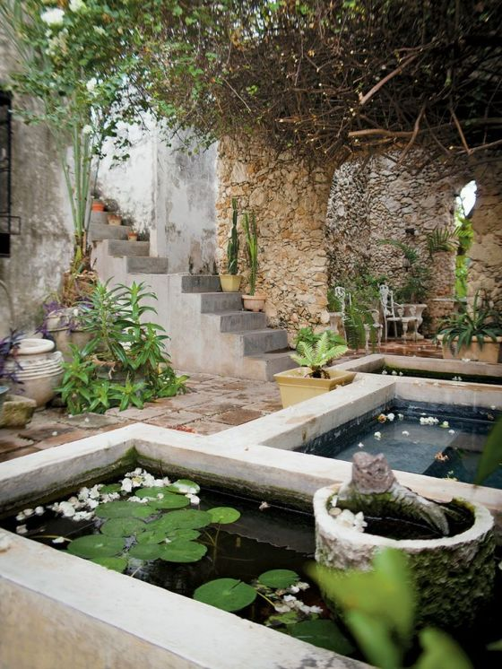 Tranquillity in a mexican yard - from my archive