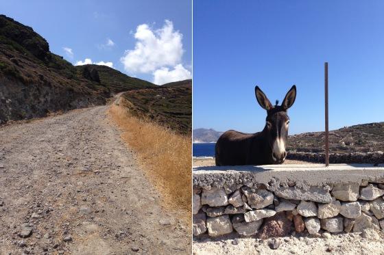 Kimolos donkey_mbf