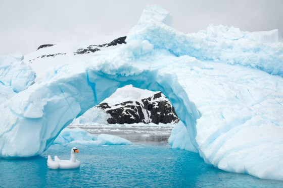 Gray-Malin-Swan-Ice-Bridge