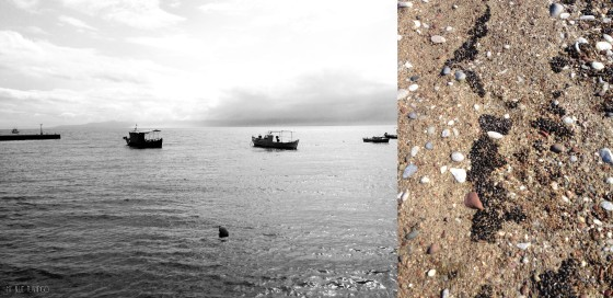 Fishermen boats at the seaport - Tiny mussels on the sand!!!
