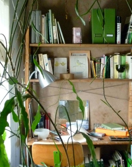 home office plants
