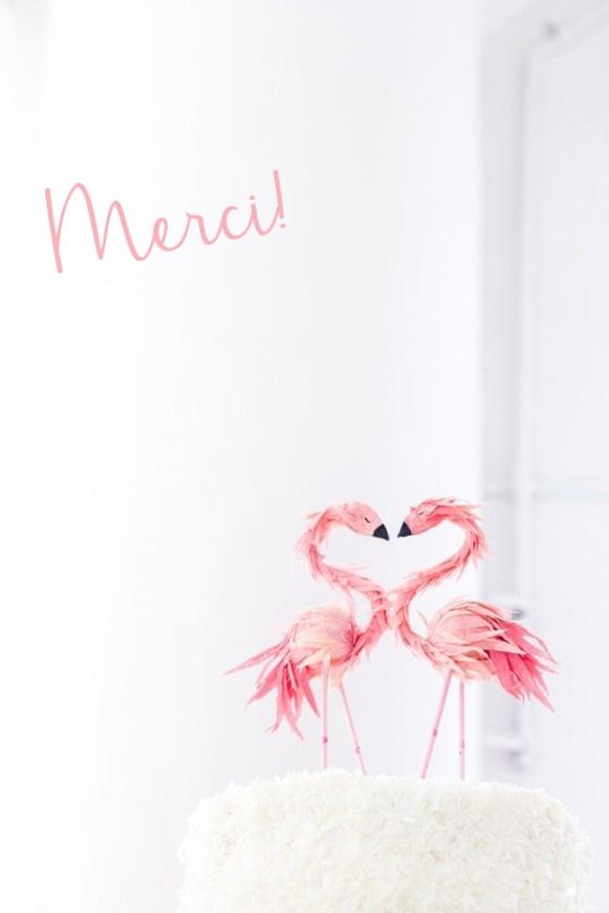 merci flamingo