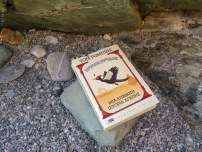 "My summer book on the pebbles. ""The woodpecker"" by Tom Robins"