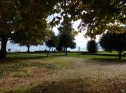 Park near the lake