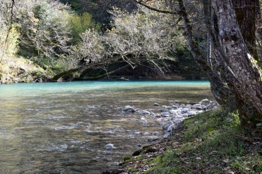 river_01_mbf
