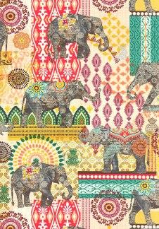 Indian patterns_Nature 20_mbf