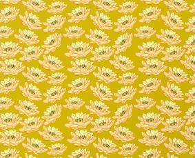 Indian patterns_Nature 23_mbf