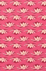 Indian patterns_Nature 29_mbf