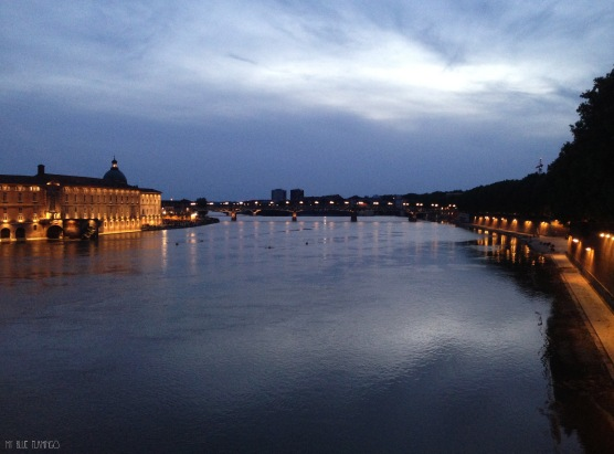 Garonne river at night