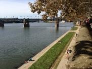 Toulouse_mbf_51